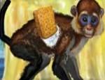 لعبة تنظيف القرد