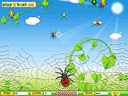 لعبة العنكبوت صائد الذباب