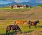 العاب مزارع البقر 2015