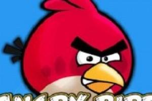 لعبة مغامرة الطيور الغاضبه